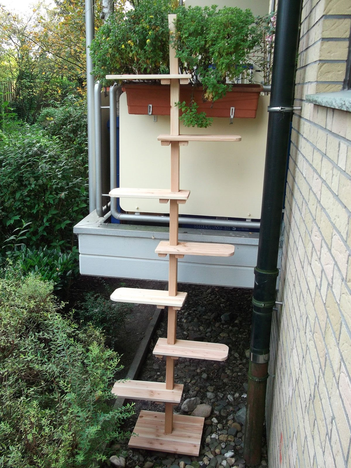 Gato Escaleras/Gato Escalera de jardín madera maciza para balcón: Amazon.es: Productos para mascotas