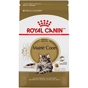 Royal Canin Maine Coon Breed Adult Dry Cat Food, 14 lb.