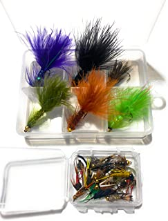 Lazy river road outfitters 24 Premium Flies with Small 6 Compartment Box