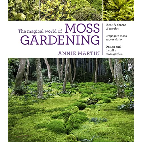 The Magical World Of Moss Gardening Annie Martin Amazon