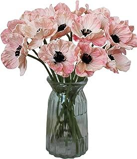 poppy pink flower