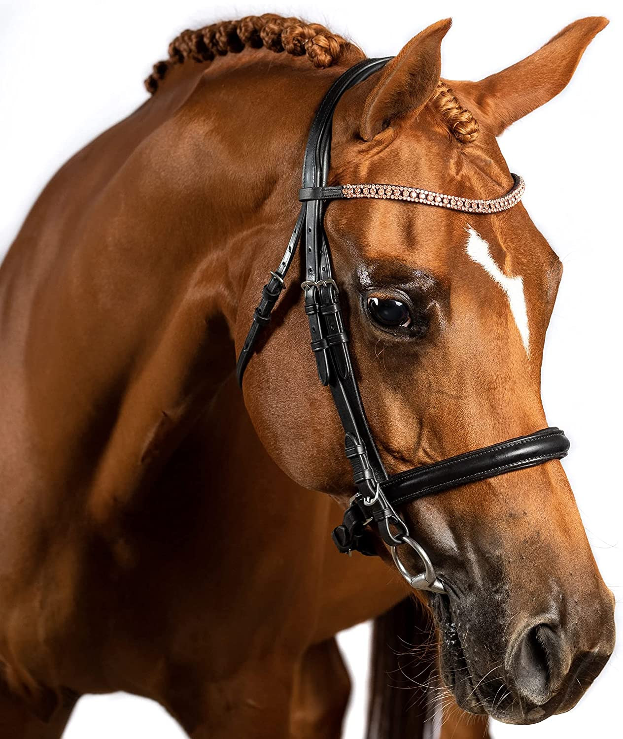 Flexible Fit Equestrian Ranking TOP6 Black English Rose W Crystal Bridle Gold lowest price