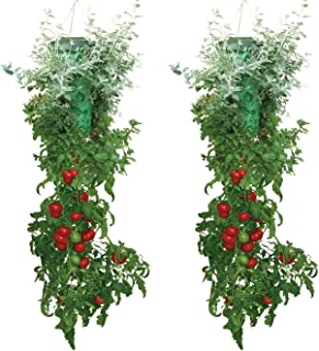homemade upside down tomato planter