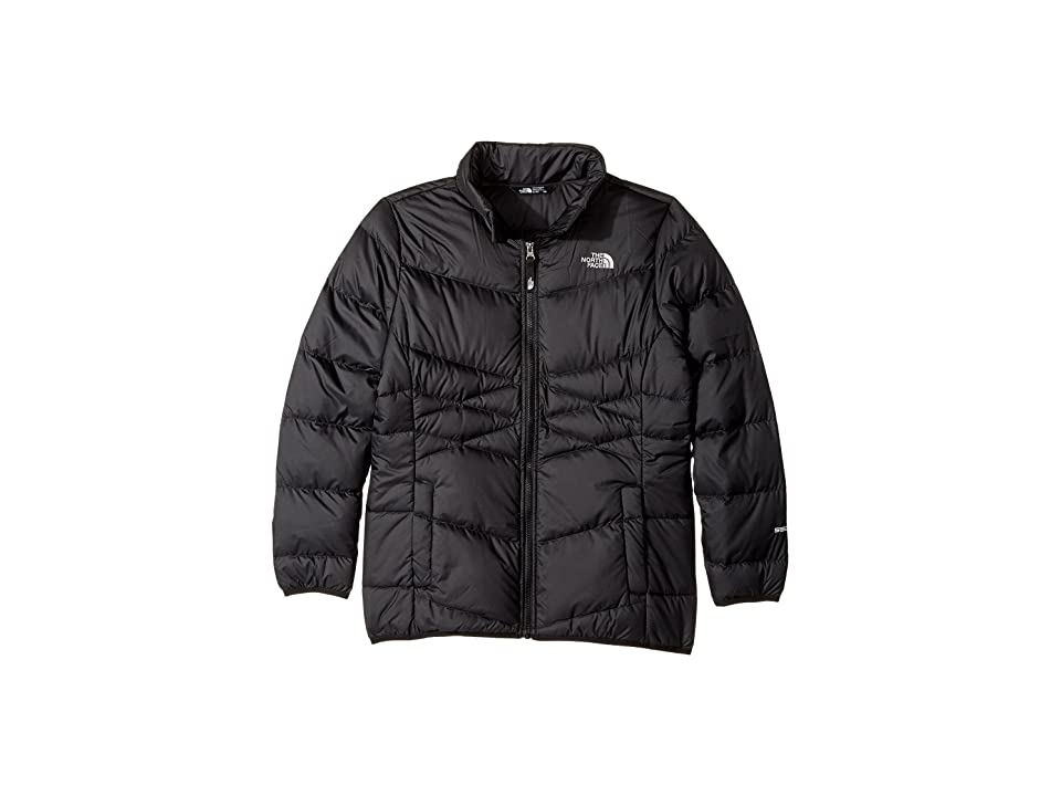3844059920d1 The North Face Kids Andes Down Jacket (Little Kids Big Kids) (TNF