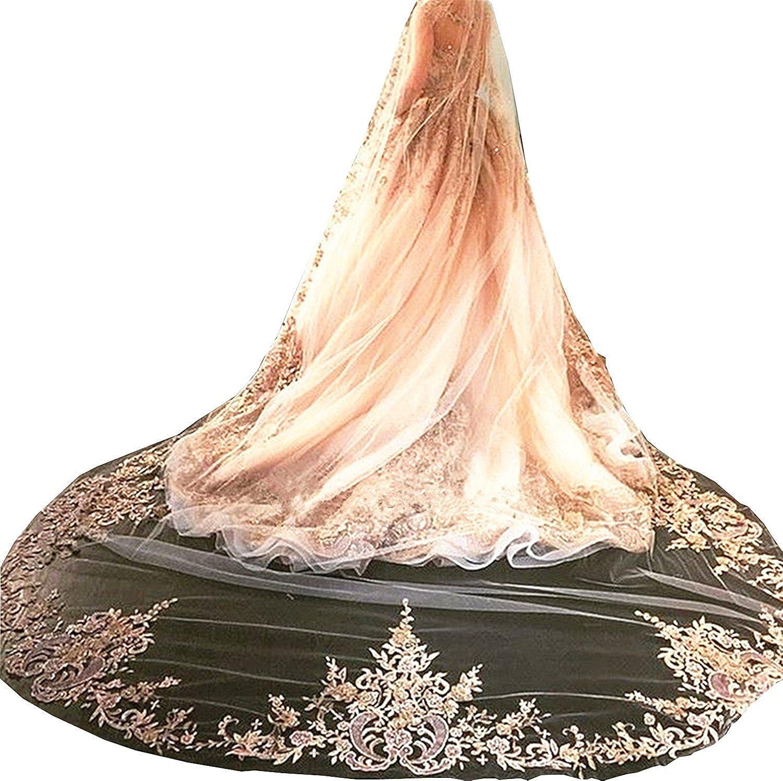 Fenghuavip Champagne Wedding Veils Lace Edge Free Comb 3M