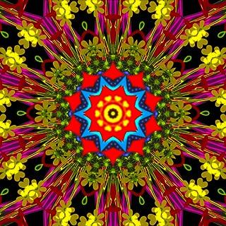 Kaleidoscope Spin Paint Art