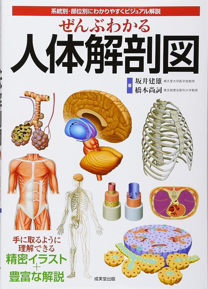 覚醒拡声器非難するぜんぶわかる人体解剖図―系統別?部位別にわかりやすくビジュアル解説