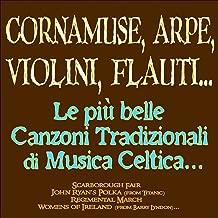 Cornamuse, arpe, violini, flauti... Le più belle canzoni tradizionali di musica celtica... (Scarborough Fair, John Ryan's Polka, Regimental March, Women of Ireland...)