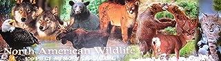 wildlife memory game