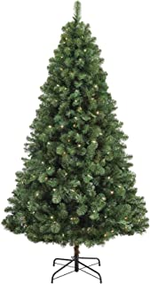 christmas trees on clearance