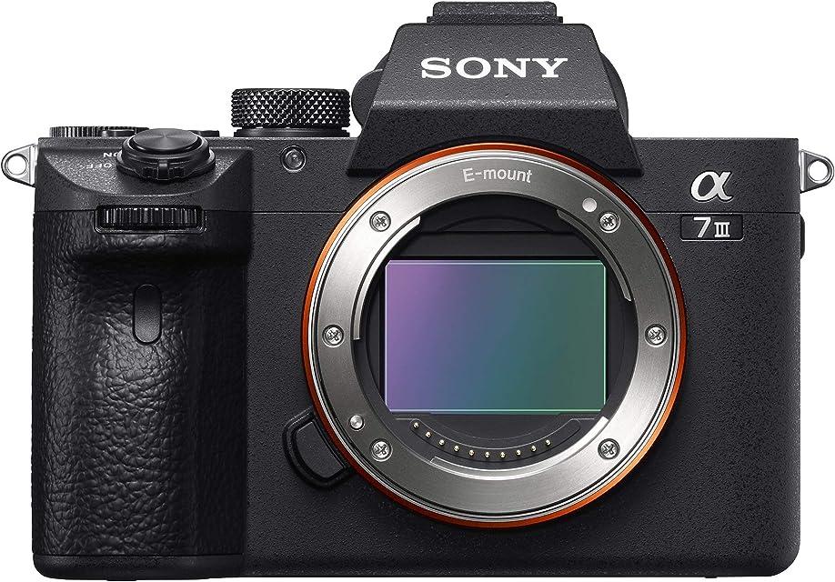 Sony Alpha ILCE7M3 - Cámara de 24.2 MP (10 fps 5 ejes AF de 0.05 s con montura E 425 puntos de enfoque 693 puntos de detección) Negro