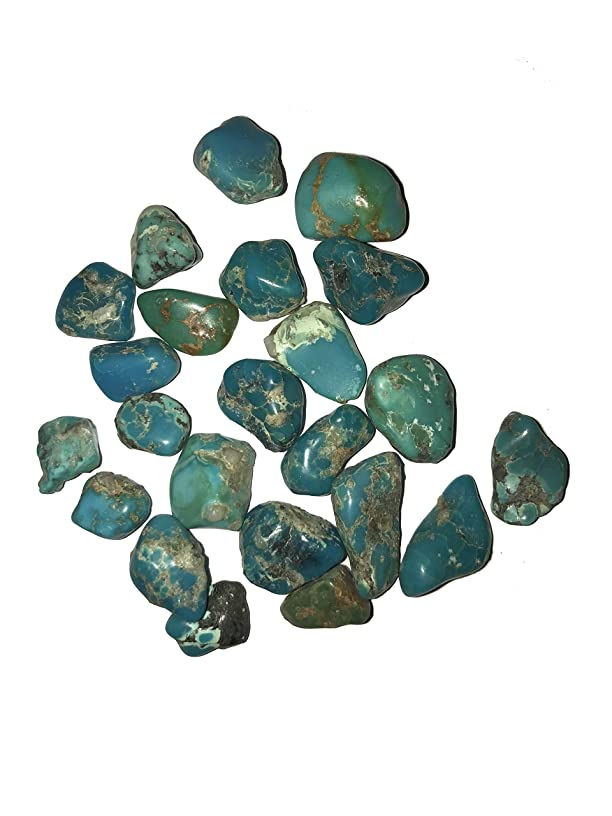 AYB Products Rough Stabilized Kingman Turquoise 30 Grams Varying Sizes from 8-22mm Flat and Round Variations Green and Blue Hues December Birthstone Capricorn