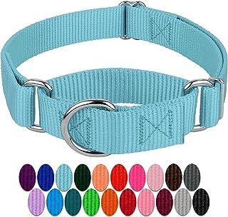 Country Brook Petz - Martingale Heavy Duty Nylon Dog Collar