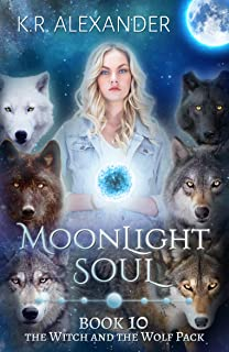 Moonlight Soul: A Reverse Harem Shifter Romance (The Witch and the Wolf Pack Book 10)