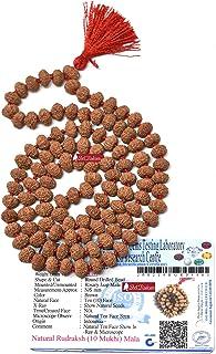 Shri Rudram Lab Certified 10 Mukhi Rudraksha Mala Rosary 108+1 Java Beads (8 mm, Multicolour)