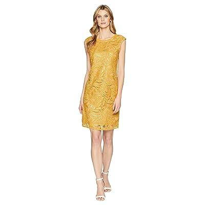 NIC+ZOE Sequin Lace Shift Dress (Gold) Women