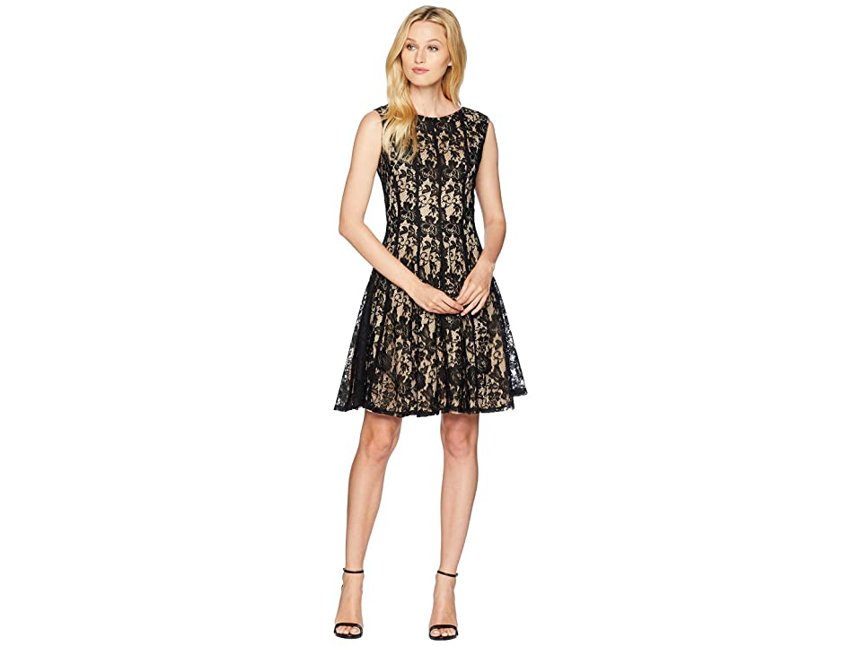 Gabby Skye Lace Seam Down Fit and Flare Dress (Black/Nude) Women
