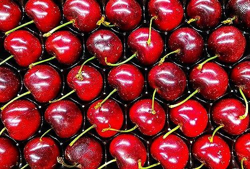 Noccioli di ciliegia per imbottitura, 5kg