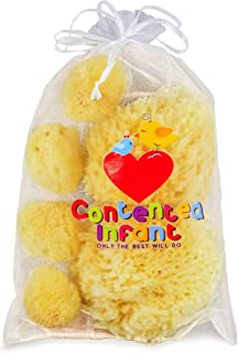 Real Sea Sponges for Babies - 6 Pk Bath Care Set, Gentle, Kind on Skin, for Bathing Washing Body Eyes, Ears Nose, Also for...