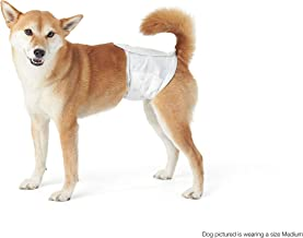 AmazonBasics Male Dog Wrap, Small, 30-Pack