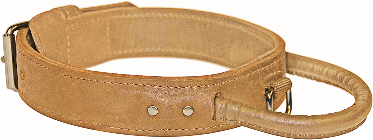 Dean and Tyler  SIMPLICITY+ , Dog Collar with Handle and Chrome Plated Steel Hardware  Tan  Size 20  by 13 4   Fits Neck 18  to 22
