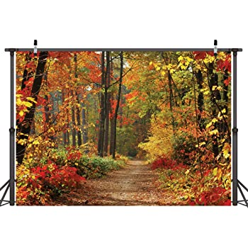 GladsBuy Tree Fallen Leaves Autumn 8 x 8 Computer Printed Photography Backdrop Nature Theme Custom Wedding Children Birthday Fashionshow Party Background HXB-233