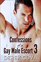 Confessions of a Gay Male Escort 3: Bound in Public (English Edition)