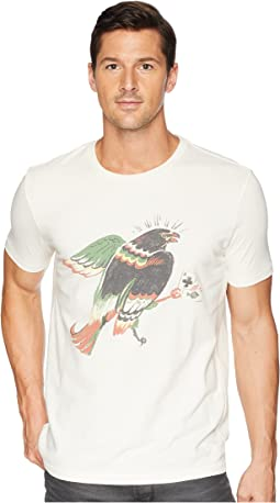 Hawk on Cross Tee