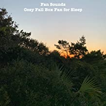 Cozy Fall Box Fan for Sleep