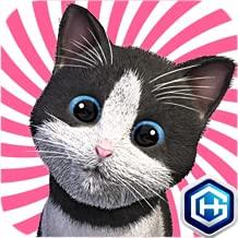 Best cutie the kitten Reviews