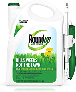 Roundup For Lawns1 Extended Wand (Northern), 1.33 gal. - Lawn Safe Weed Killer for Northern Lawns, Kills Crabgrass, Dandelion, Clover and Yellow Nutsedge - Kills Weeds, Not the Lawn