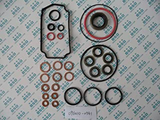 Repair Kit 096010-0541 Compatible With Toyota 1 HZ VE Injection Pump 196000-2300 Work With Head Rotor 096400-1500 2 Bags