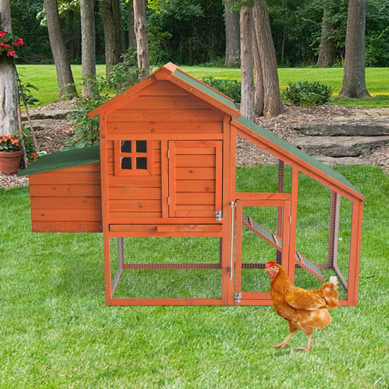 20+ Buy KINTNESS Chicken Coop Large Wooden Outdoor Bunny Rabbit Hutch ... Fotografie