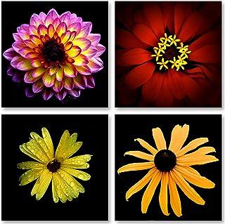 Popular Flower Close-Ups on Black Zinnia Daisy Dahlia and Marigold; Floral Decor; Four..