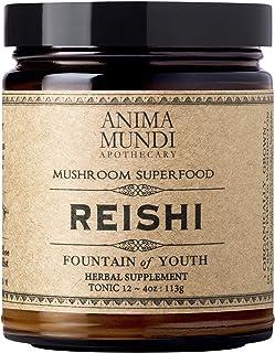 Anima Mundi Reishi Fountain of Youth Mushroom Powder - Pure Organic Reishi Supplement for Immune & Focus Support - Sustain...