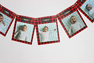 Lumberjack First Birthday Monthly Photo banner, Fits photos 4x4, First Year photo banner, New born - 12 months