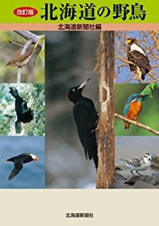改訂版 北海道の野鳥