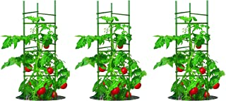 YARDGARD Gardener's Blue Ribbon 3-Pack Ultomato Tomato Plant Cage