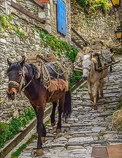 Notebook: Mules path cobblestone animal carrying village Italy Italian paving paver brick bricks masonry