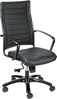 Eurotech Seating Europa Titanium LE111TNM-BLKL High Back Chair, Black