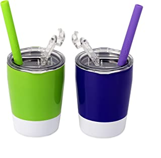 Housavvy Kids Cups 2 Pack - Stainless Steel Kid Cup Set with Lids and Straws - Double Wall Vacuum Insulated Toddler Cups -...