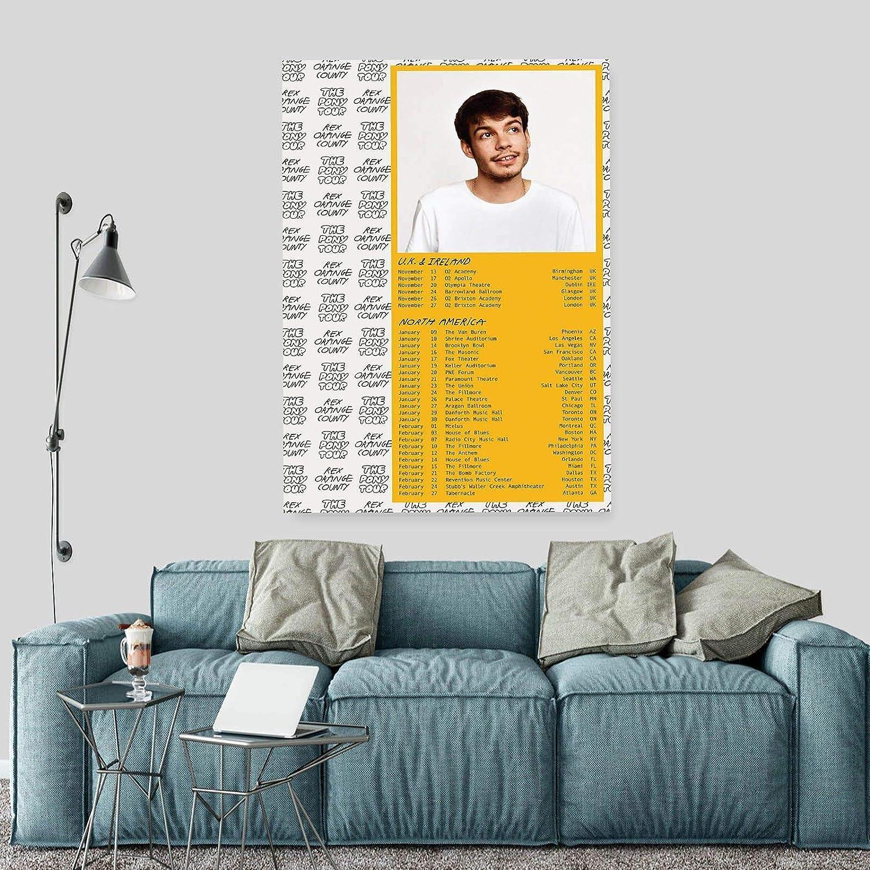 Singer Star Rex Orange County Art  A0 A1 A2 A3 A4 Photo Poster