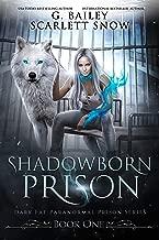 Shadowborn Prison (Dark Fae Paranormal Prison Series Book 1) (English Edition)