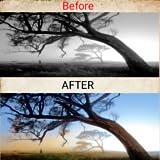 Black and White photo to Colour photo converter | Convert your any black and white photos to a colour photo.
