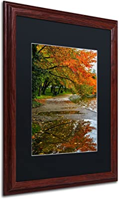 Tidal Basin Autumn 1 Black Matte Artwork by CATeyes, 16 by 20-Inch, Wood Frame