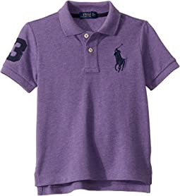 Safari Purple Heather