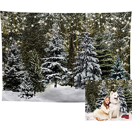 7/×5ft Backdrop Photography Background Winter Pine Tree Photo Backdrop Photography Background Birthday Parties Creative Background Wall Drop Portrait Photo Background for Photo Photography Back
