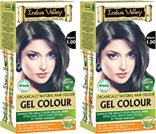 Indus Valley Herbal, Natural Gel Hair Color Black 1.00 Pack of 2 (20gm + 200 ml)
