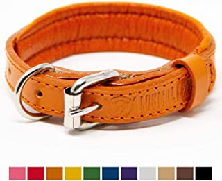 Best grey leather dog collar Reviews