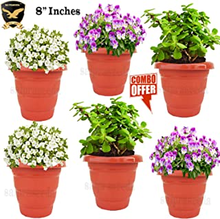 SAI PRASEEDA 8'' Inches Plant pots & Flower Baskets for Garden and Balcony (Pack of 6`s) Terracotta Color